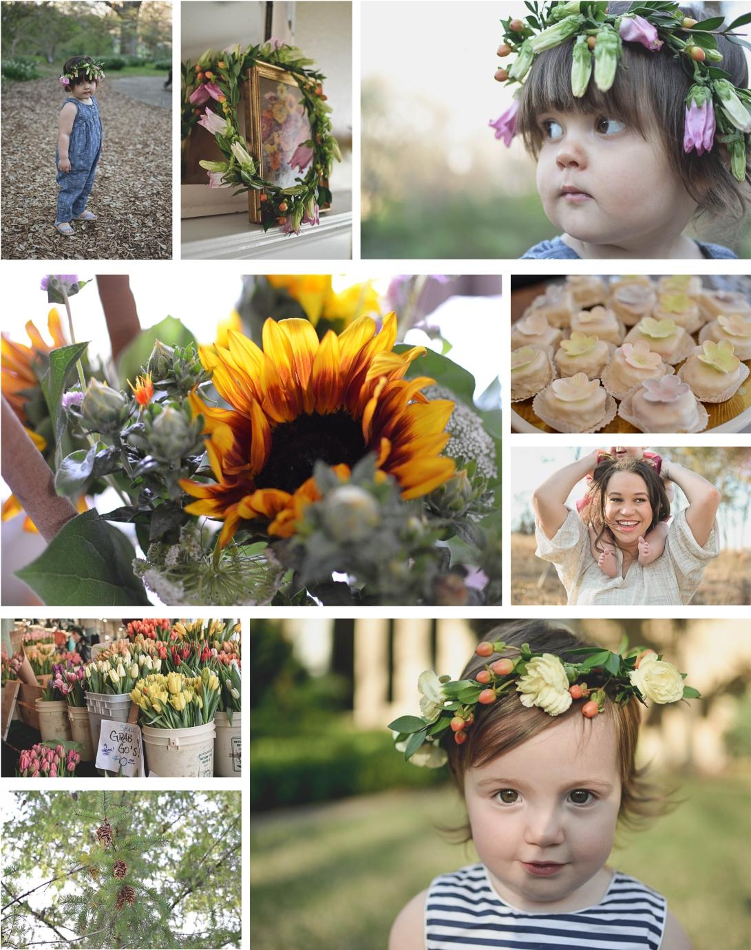 Spring Gallery Photos