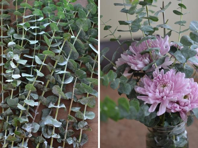 Eucalyptus&Mums