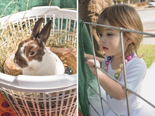 Piper-Bunny