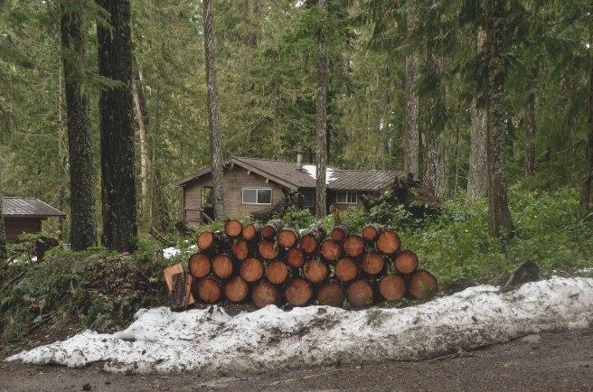 Seattle-2016-Logs