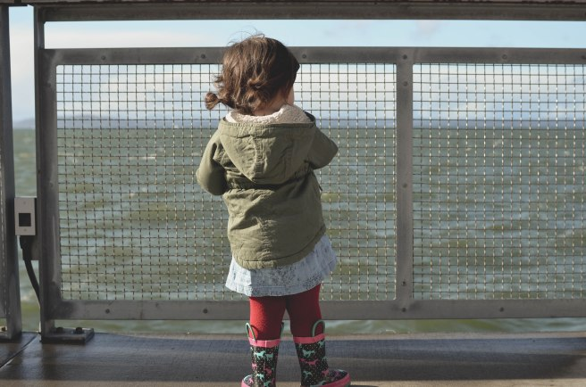 Seattle-2016-Fisher-gazing-at-the-sea